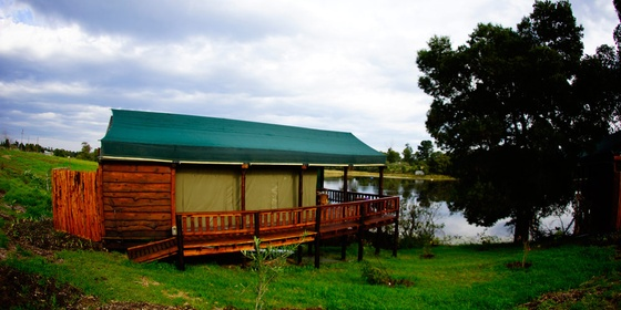 Tented Family Cabins