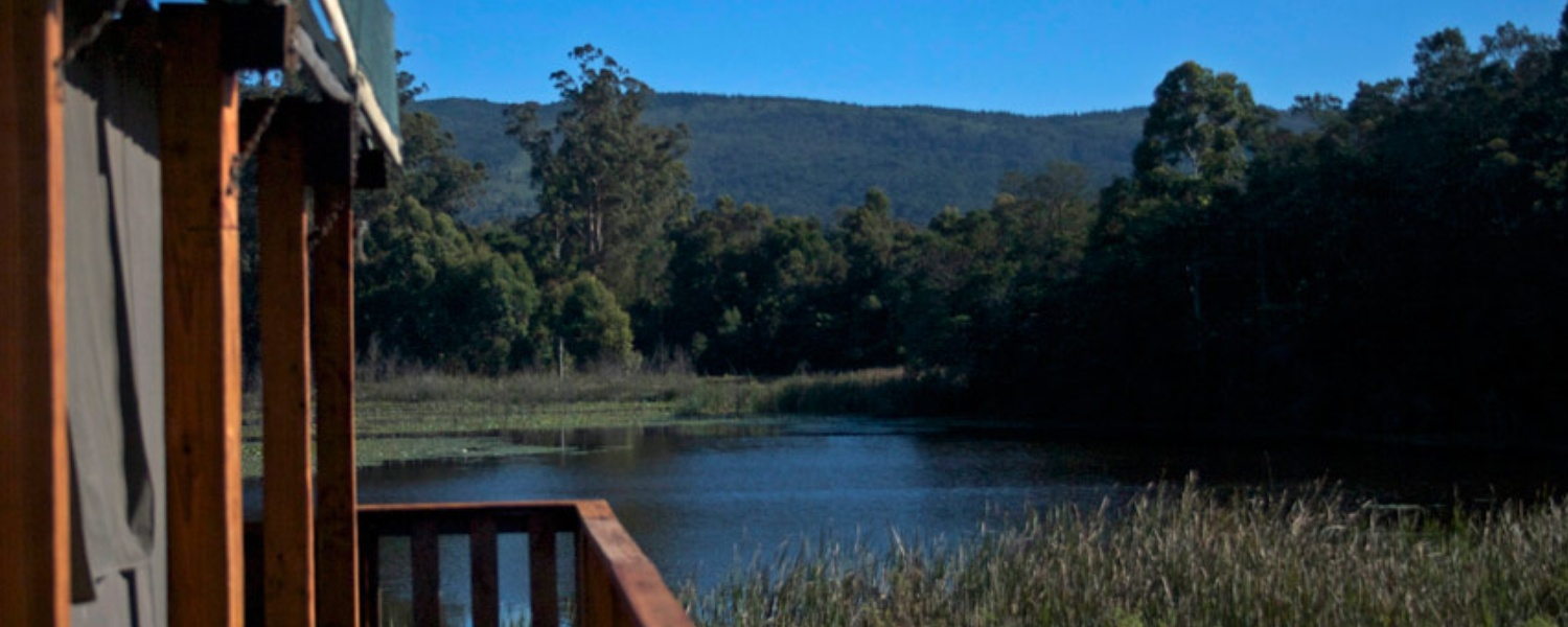 7 Passes tented camp, wilderness luxury tents, accommodation wilderness, accommodation garden route
