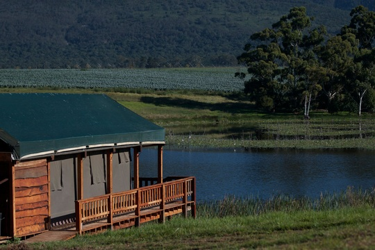 7 Passes tented camp, accommodation garden route, luxury tents wilderness, glamping wilderness, glamping garden route